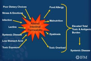 leaky gut, intestinal permeability