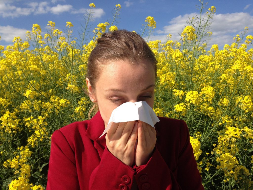 Hay fever, allergic rhinitis, allergies, gut health, Quercetin, nutritional therapy Cheshire