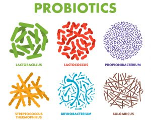 IBS and probiotics