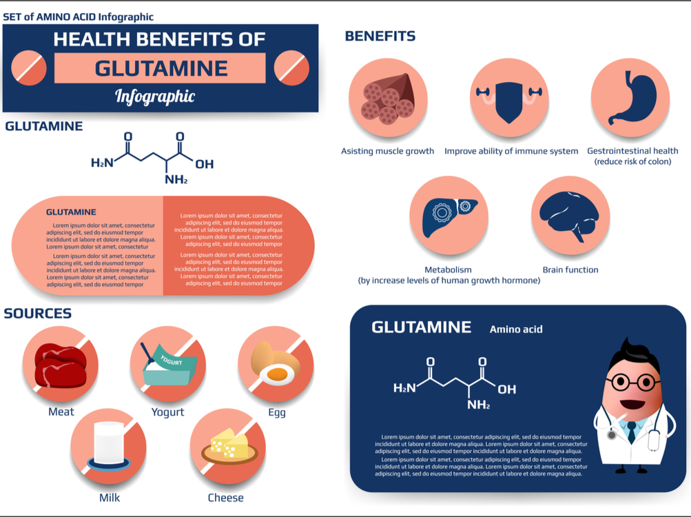 Glutamine and the gut