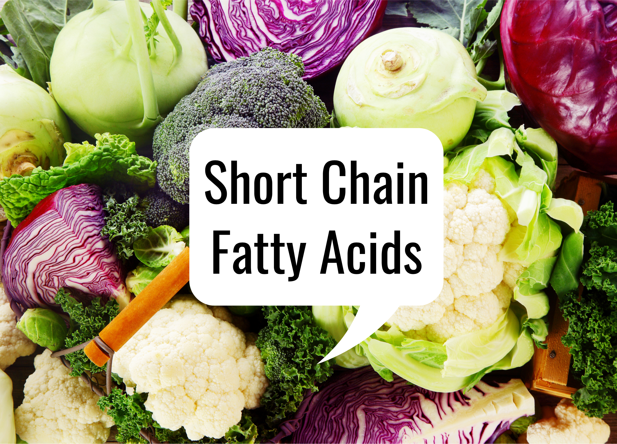 Short Chain Fatty Acids – The one thing standing between you and optimal health