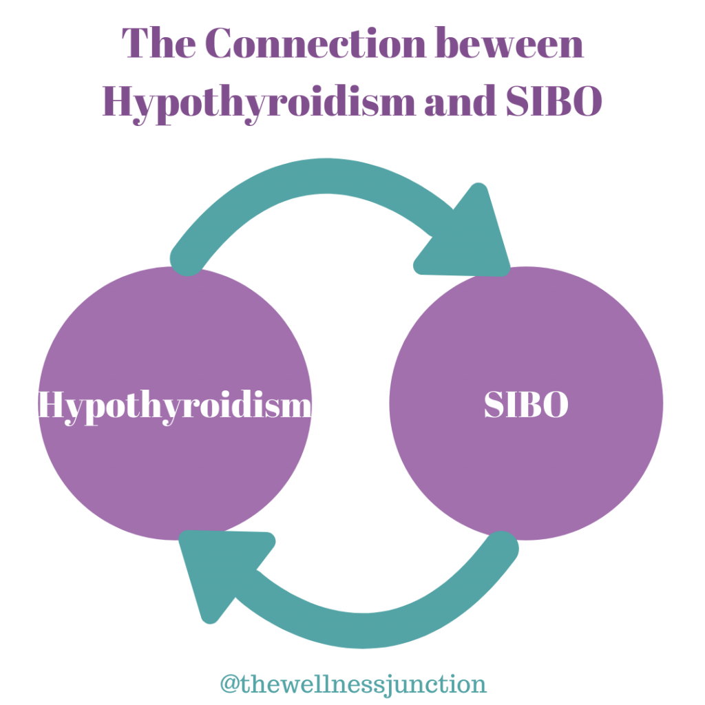 Hypothyroidism and SIBO