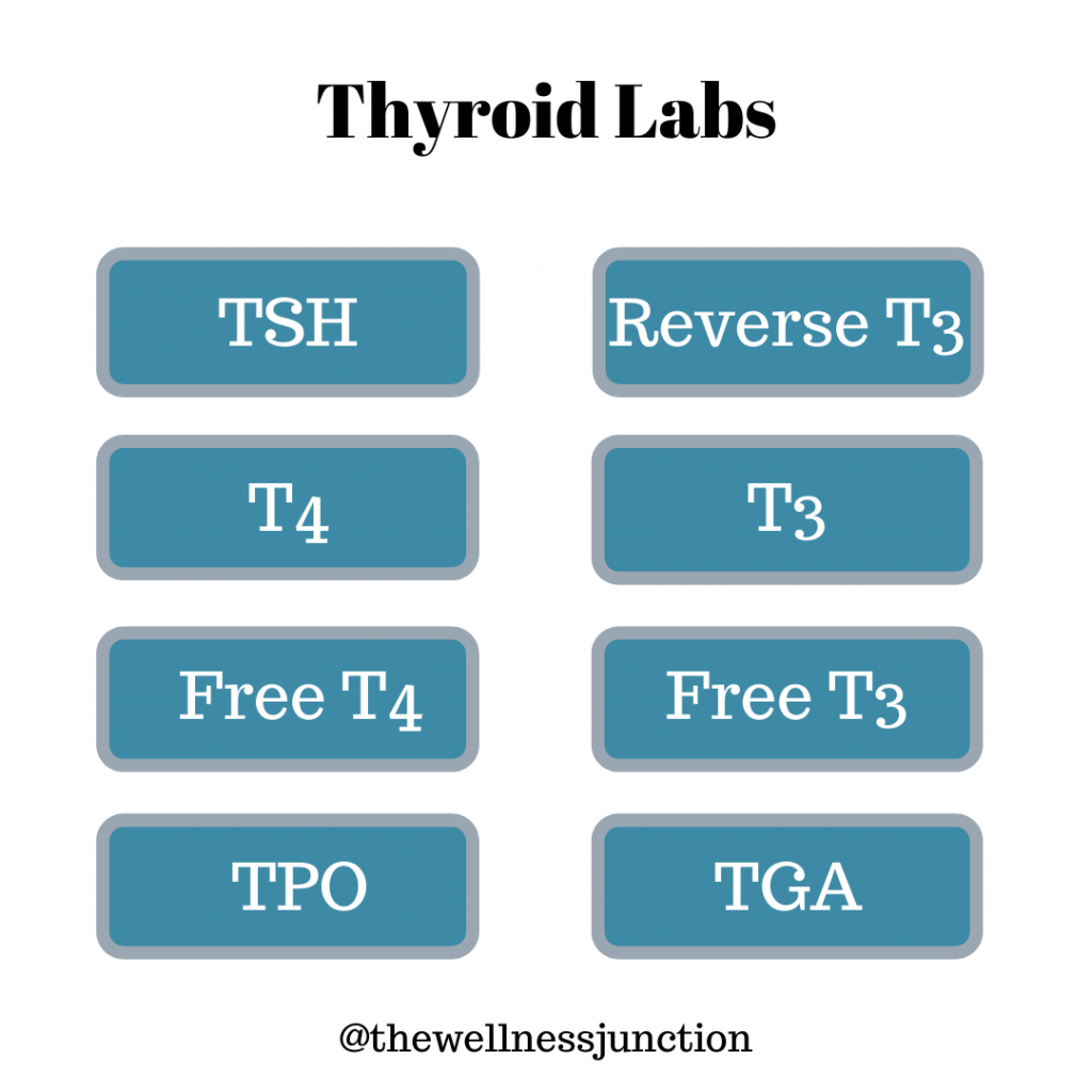 Thyroid Lab Markers